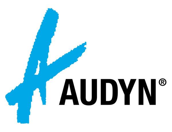 Audyn